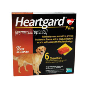 Heartworm Preventatives - Canine