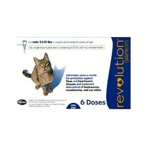 Heartworm Preventatives - Feline