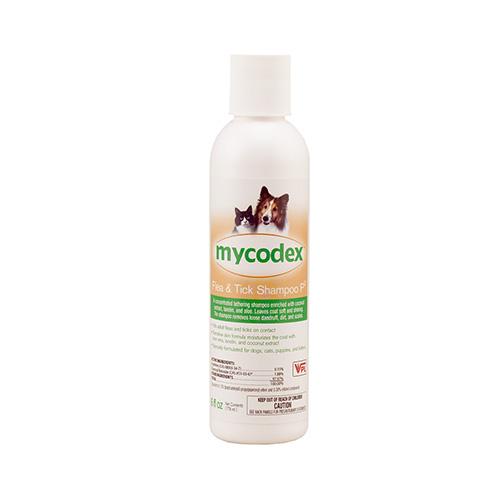 Skin Care - Shampoos